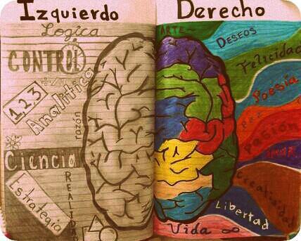 Cambiar Hábitos de Movimiento para Rejuvenecer el Cerebro